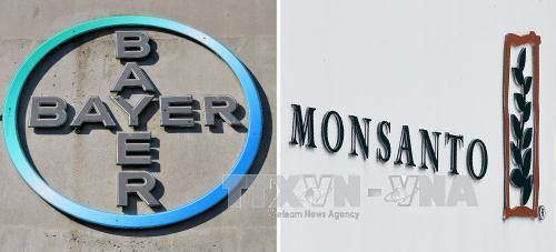 Bayer, Monsanto hoàn tất thương vụ sáp nhập lịch sử