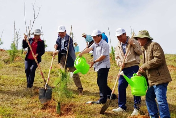 Lam Dong's leaders join in planting trees