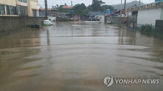 This file photo, provided by an anonymous citizen, shows a flooded road in Goheung, South Jeolla Province on July 6, 2017. The area recorded 58 mm of heavy rain per hour. (Yonhap)