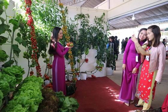 VIDEO: Visitors enjoy high-tech agriculture fair in Dalat