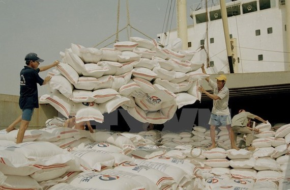 Rice loading at Sai Gon Port in HCM City. (Photo: VNA)