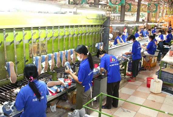 CPTPP vital to VN economic reforms: minister