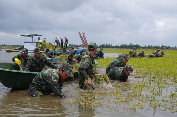 Rains hit south, Mekong region's lowland areas experience flooding