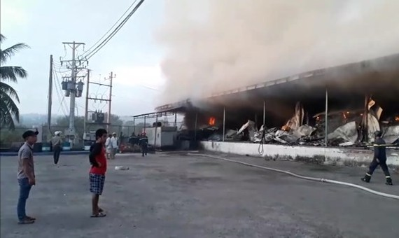 Fire destroys hundreds of tons of dragon fruit in Binh Thuan