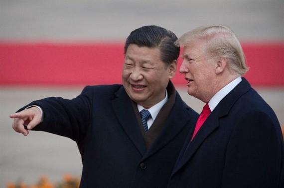 Trump, Xi eye G20 talks after 'very good' phone call