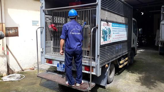 Xử lý việc thả rông chó nơi công cộng