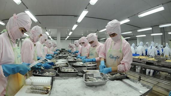 Sản xuất hàng xuất khẩu một trong 5 lĩnh vực được vay vốn lãi xuất ưu đãi. Ảnh: CAO THĂNG