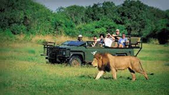 Nam Phi khuyến khích du khách quốc tế