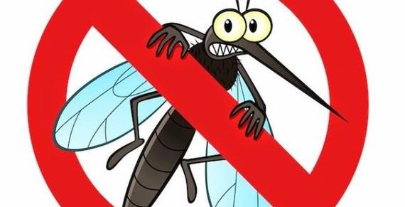 Muỗi là một trong những nguồn lây bệnh sốt rét