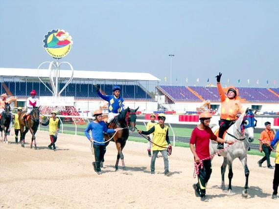 Ngựa chiến được dẫn ra trường đua Đại Nam.