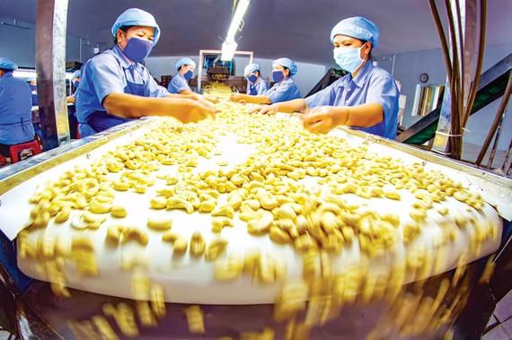 Rủi ro phụ thuộc nguyên liệu nhập khẩu