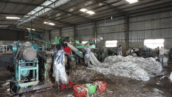Doanh nghiệp phải có trách nhiệm bảo vệ môi trường