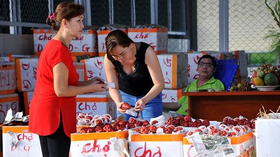 Ki ốt trái cây ở chợ đầu mối Dầu Giây ngày đầu hoạt động