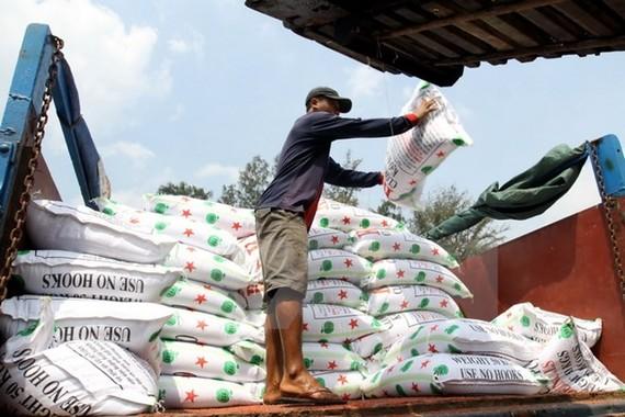 Bốc dỡ hàng xuất khẩu tại Cảng Sài Gòn.