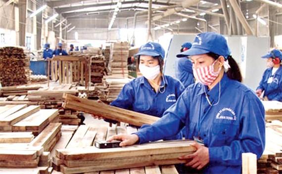 Phát triển kinh tế song hành với bảo vệ môi trường