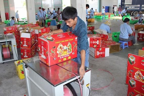 Người tiêu dùng Hàn Quốc thích một số trái cây của Việt Nam như thanh long, xoài, chuối.