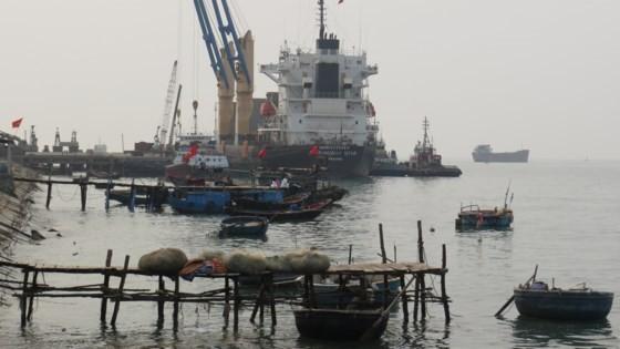 Cảng Hòn La nói giảm hơn 50% công suất do BOT Tasco