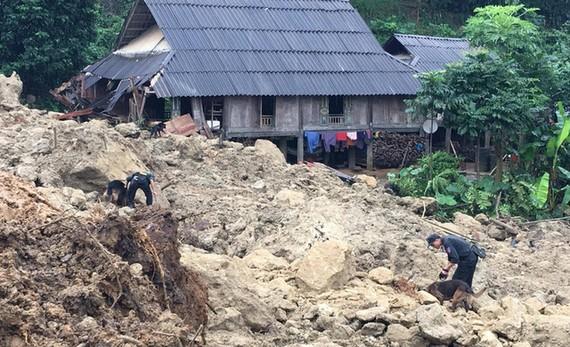 Đợt bão lũ vừa qua đã gây thiệt hại nặng nề cho người dân. Trong ảnh là lực lượng cứu hộ đưa chó nghiệp vụ hỗ trợ tìm kiếm nạn nhân mất tích tại xóm Khanh, Hòa Bình - Ảnh: XUÂN LONG