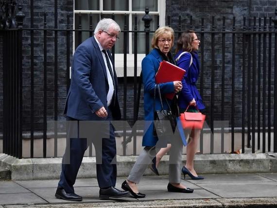 Chủ tịch Hạ viện Anh Andrea Leadsom (giữa) sau một cuộc họp tại thủ đô London ngày 14/11. (Nguồn: AFP/TTXVN)