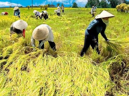 WB: Đông Á-Thái Bình Dương cần thay đổi mô hình tăng trưởng