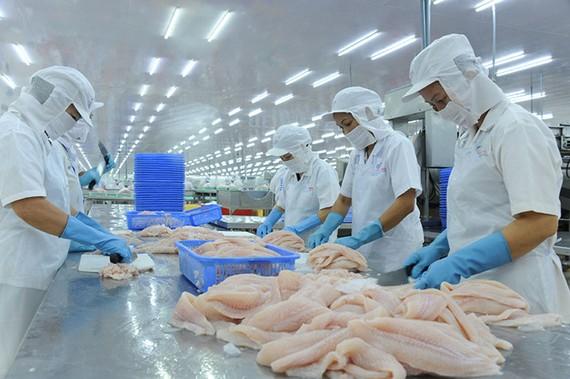 Chế biến cá tra xuất khẩu ở ĐBSCL