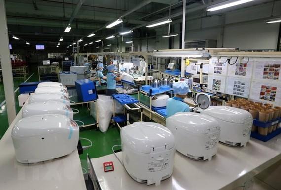 Sản xuất đồ gia dụng, thiết bị điện tử tại Công ty TNHH Tiger VietNam, vốn đầu tư của Nhật Bản tại khu công nghiệp Amata ở tỉnh Đồng Nai. (Ảnh: Danh Lam/TTXVN)