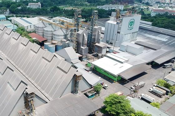Công ty CP trong Khu công nghiệp Biên Hòa 2. Ảnh: CAO THĂNG