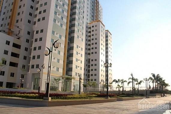Đấu giá 200 căn hộ chung cư tái định cư Phú Mỹ, quận 7
