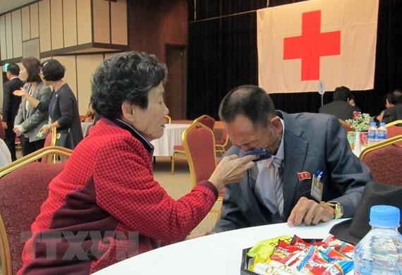 Đoàn tụ gia đình ly tán giữa Hàn Quốc và Triều Tiên. (Nguồn: AFP/TTXVN)