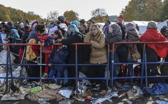 5 nước EU đồng ý tiếp nhận người di cư