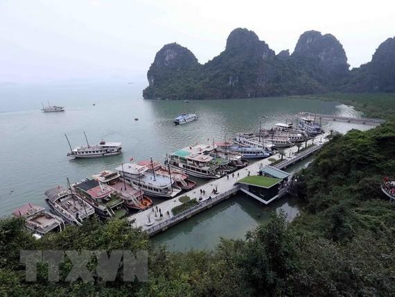 Tàu neo đậu trên vịnh Hạ Long. (Ảnh: Quang Quyết/TTXVN)