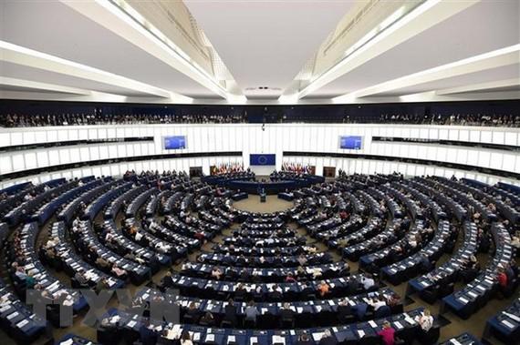 Toàn cảnh một phiên họp Nghị viện châu Âu. (Ảnh: AFP/TTXVN)