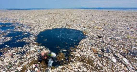 """地中海恐將成為""""塑料之海"""""""