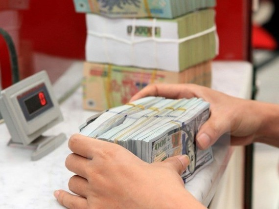 Vietnam received approximately 13.8 billion USD in 2017, showing a year-on-year rise of 16 percent  (Photo: VNA)