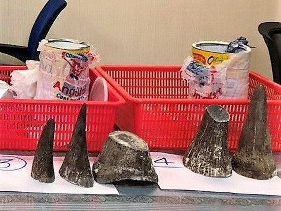 Rhino horns seized at the airport (Source: VNA)