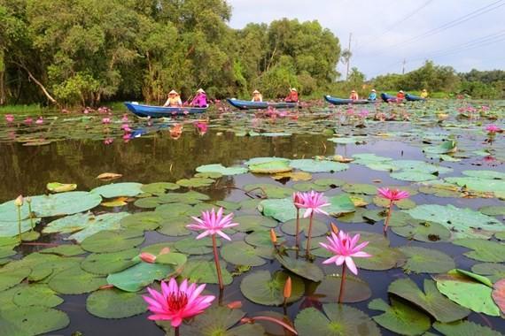 Tourists visit Long An province. (Photo: Sggp)