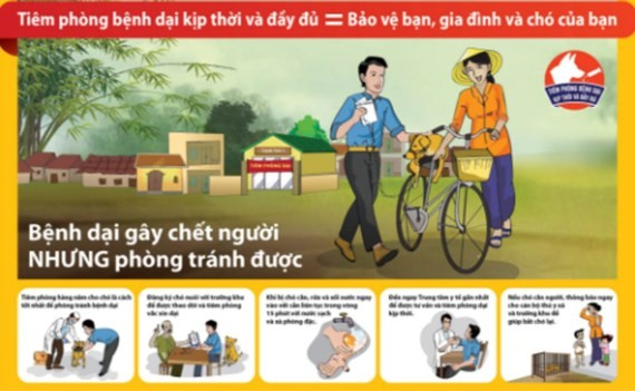 A poster calls for rabies prevention (Photo: SGGP)