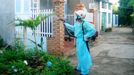 HCMC still sees  increase in dengue infections