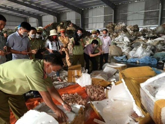 Market managers and police open containers of rotten pig organs (Photo: SGGP)