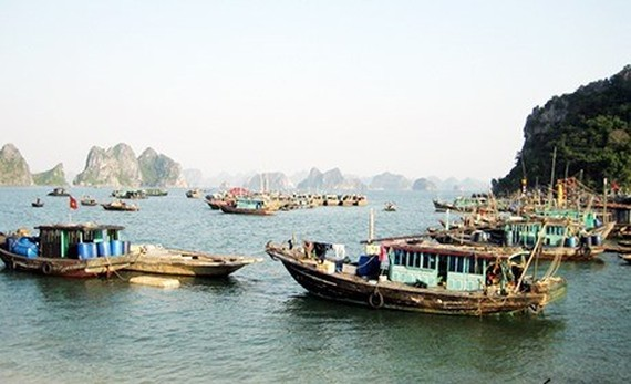 Over-fishing is fast depleting Quảng Ninh's marine resources, but the northern province has not been able to tackle it effectively. (Photo baoquangninh.vn)