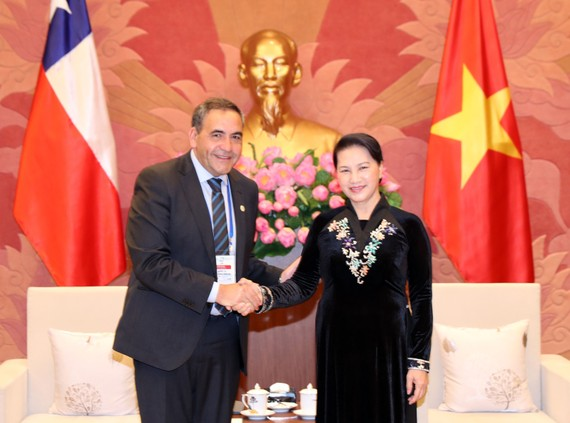 National Assembly Chairwoman Nguyen Thi Kim Ngan (R) receives President of the Chamber of Deputies of Chile Fidel Espinoza Sandoval in Hanoi on January 20 (Photo: VNA)