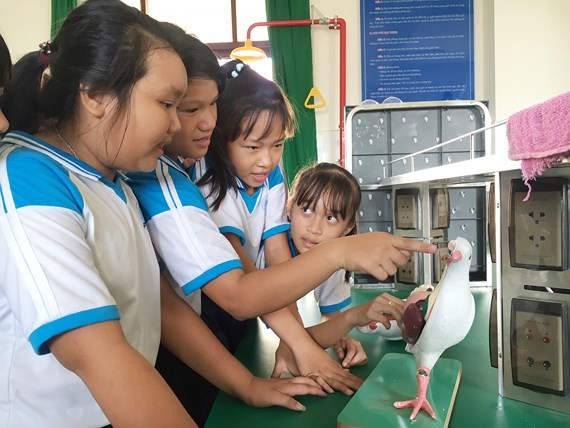 Students of Thanh An Junior High SChool in the lab (Photo: SGGP)