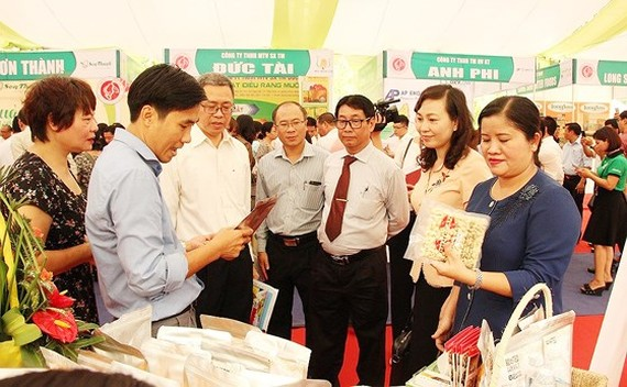 Binh Phuoc develops brandname of cashew attached with geographical indications