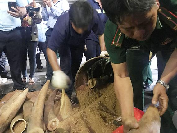 Relevatn agencies in Vietnam detect illicit wildlife trade last year (Photo: SGGP)