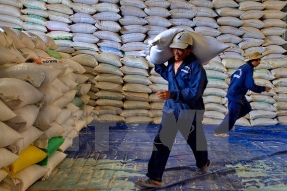 Thanh Hoa to receive over 50,000 tonnes of rice to support forest protectors
