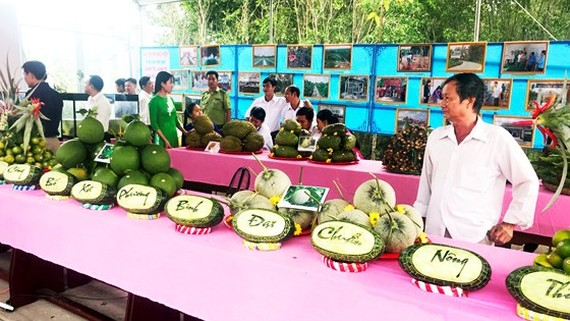 Agricultural products of farmers in Phuong Binh Commune  (Photo: SGGP)