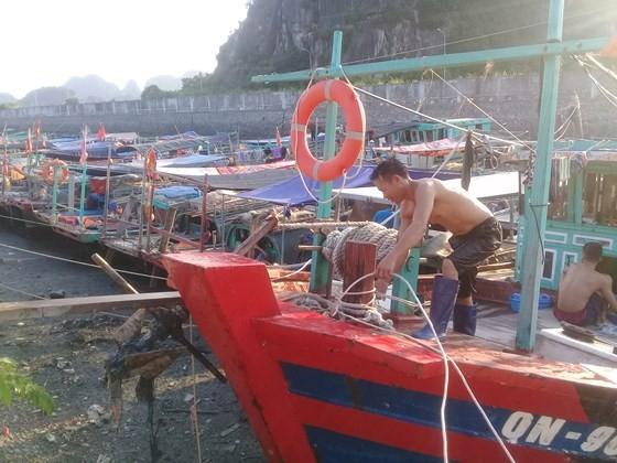 A fisherman in Quang Ninh anchors his boat (Photo: SGGP)