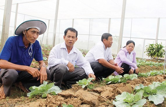 These farmers in Soc Trang province have applied modern agricultural techniques to improve their income (Photo: SGGP)