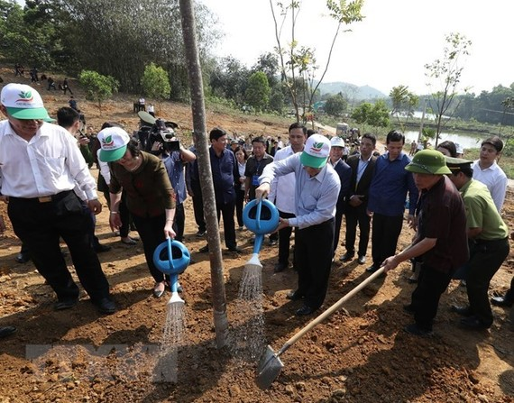The New Year Tree Planting Festival is launched in Yen Bai province. (Photo: VNA)
