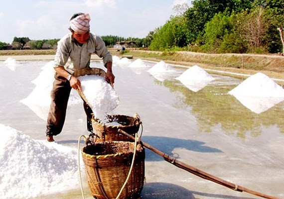 Salt price leap improves farmers' income